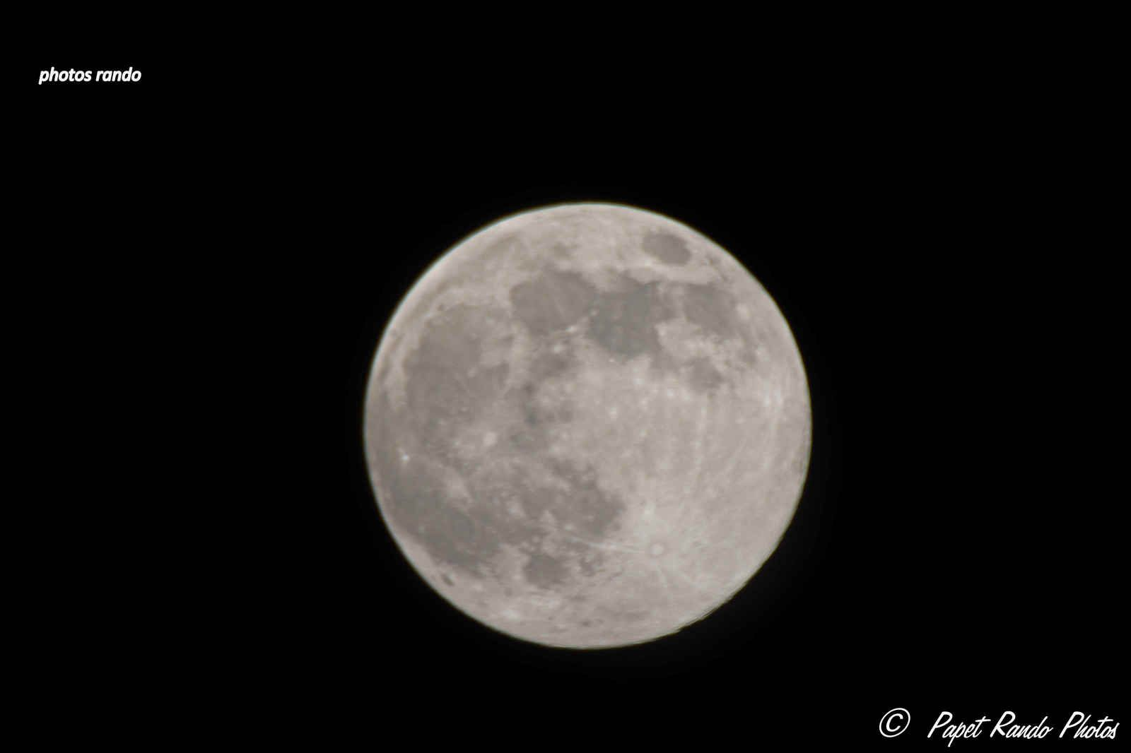 Pour deux fois pas un nuage,( rare chez moi ), dans le jardin le 7 avril, après photos de Venus la Lune du 7 mai  , Photos avec Nikon 7100,objectif 50-500 Sigma, avec par moment, converter 2x en plus = 100-1000, avec le pied, ou main levée