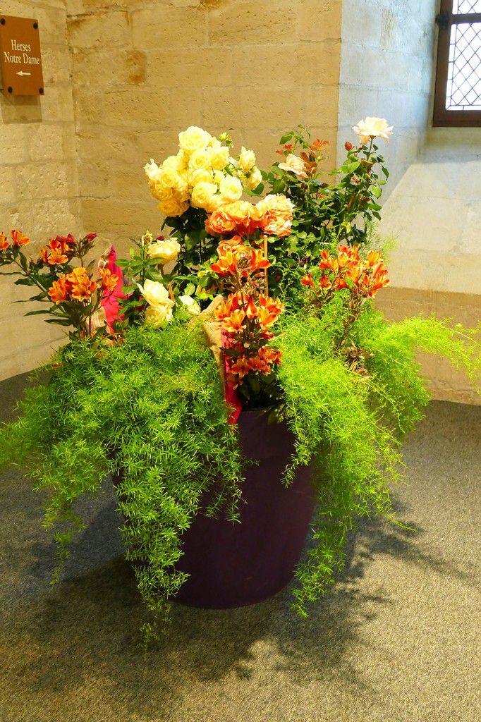 Compositions multicolores et robes végétalisées avec talent, exposées près des ateliers ouverts au public (mai 2018, images personnelles)