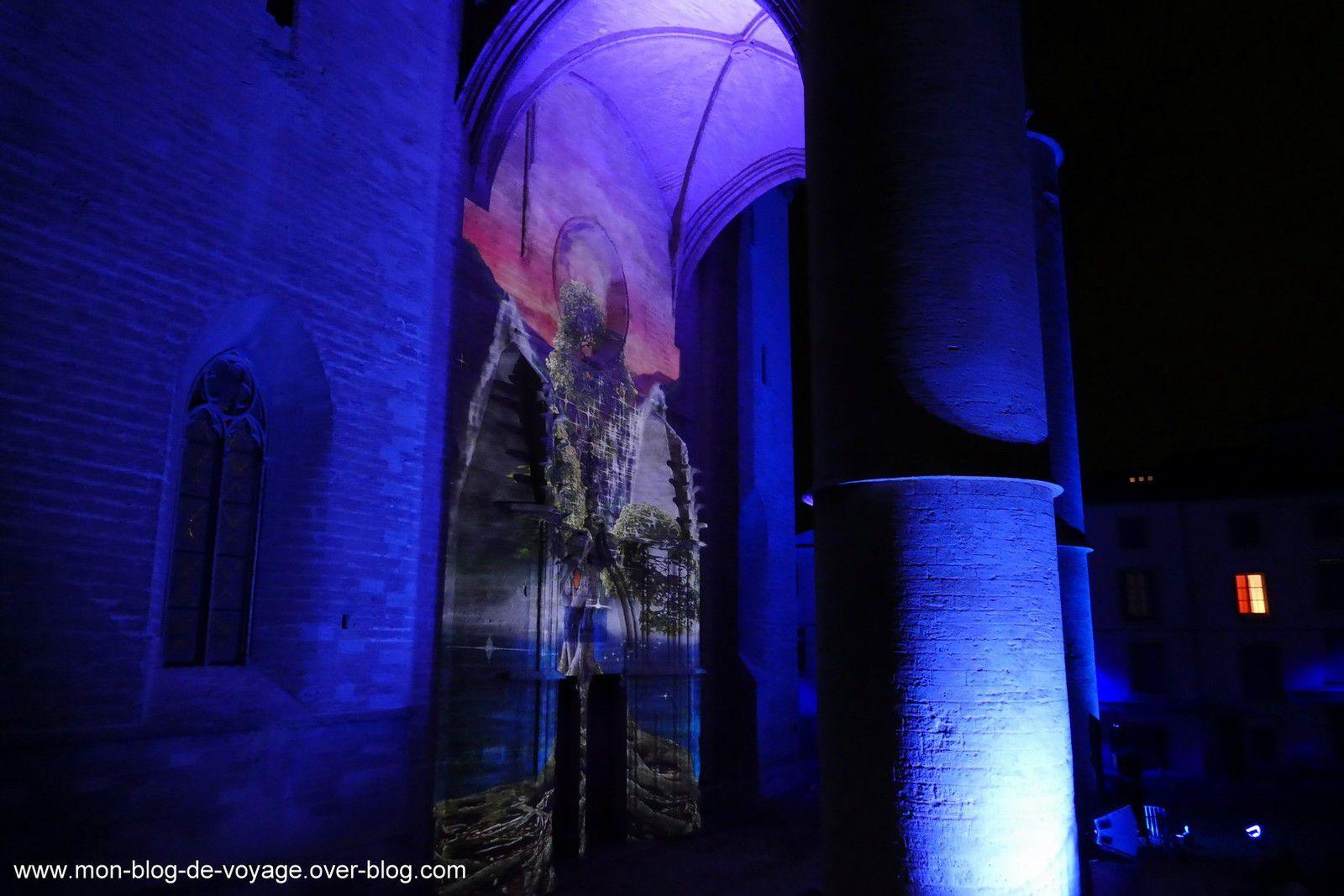 De magnifiques séquences réalisées pour habiller le porche de la Cathédrale de Montpellier (novembre 2019, images personnelles)