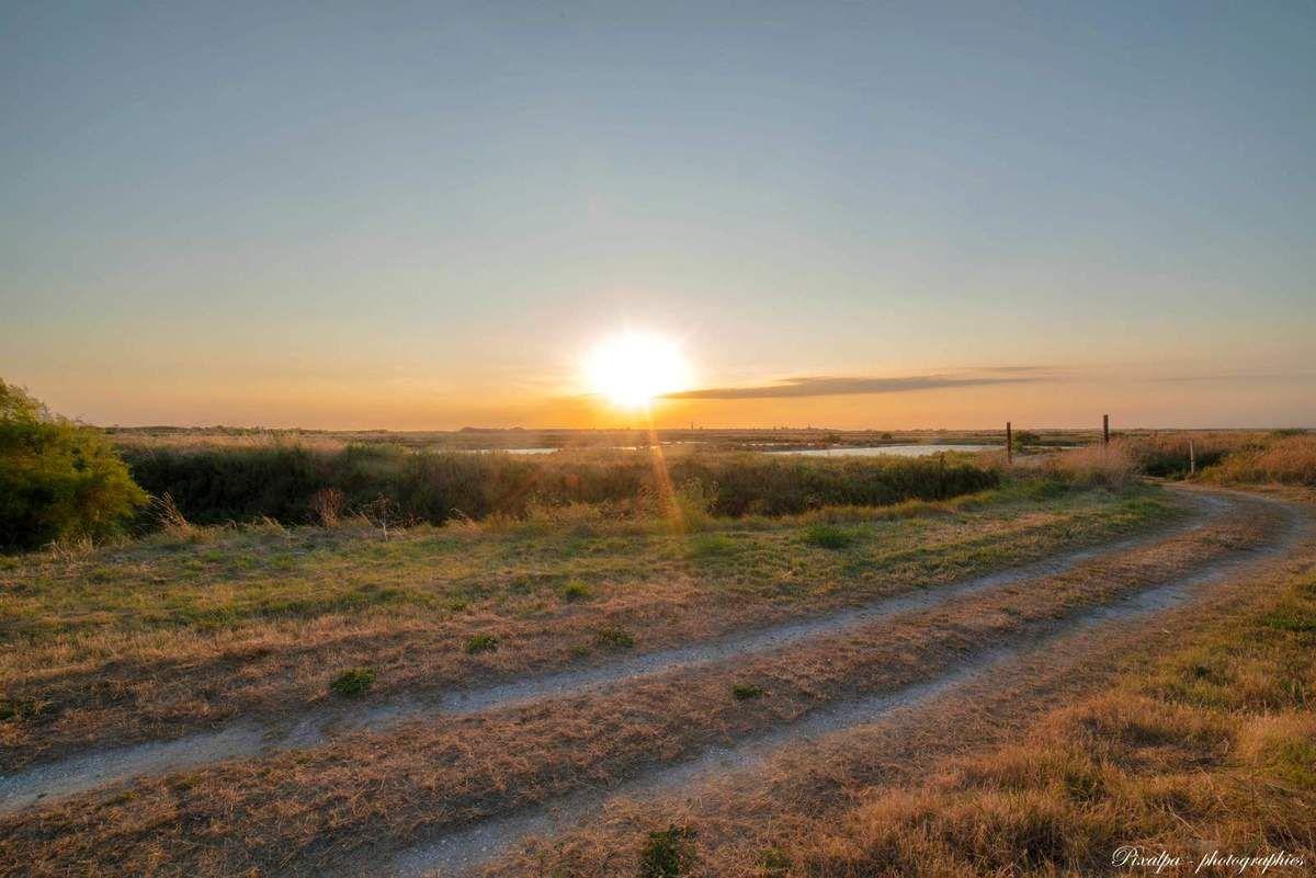 Coucher de soleil sur les marais de la presqu'ile de Loix — à Île de Ré.