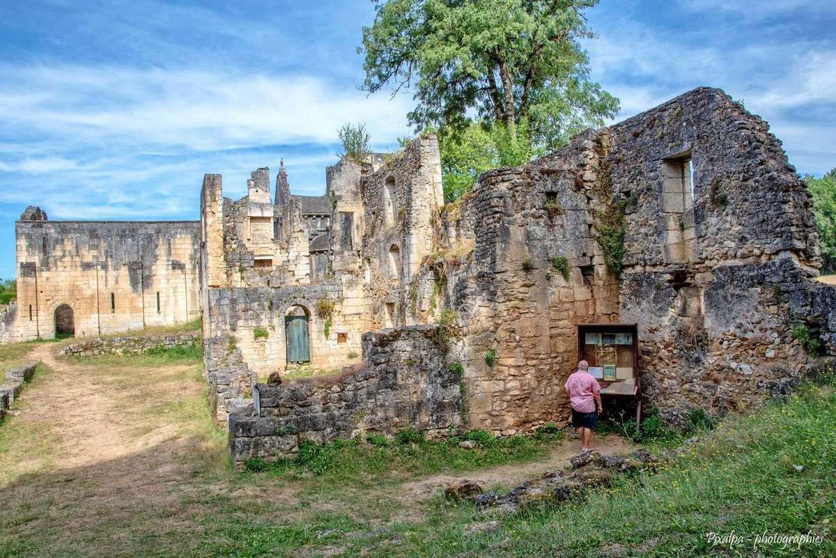 Ruines de l'Abbaye de Boschaud à Villars (24)