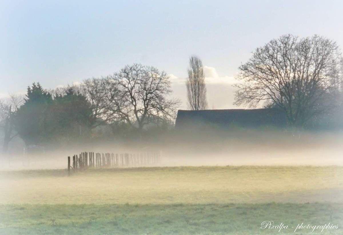 Ma sortie du jour, samedi dernier, dans le brouillard !!!