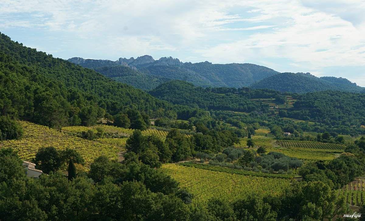 Séguret, terre de vignobles Séguret est une terre de viticulteurs voisine de Gigondas, Rasteau et Cairanne, située dans la vallée du Rhône méridionale. A l'arrière plan on aperçoit les dentelles de Montmirail