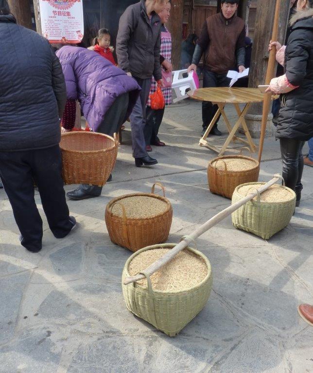 3)Zhaoxing