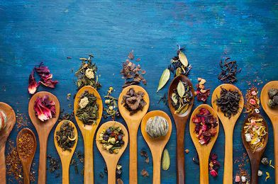 Les infusions et rooibos