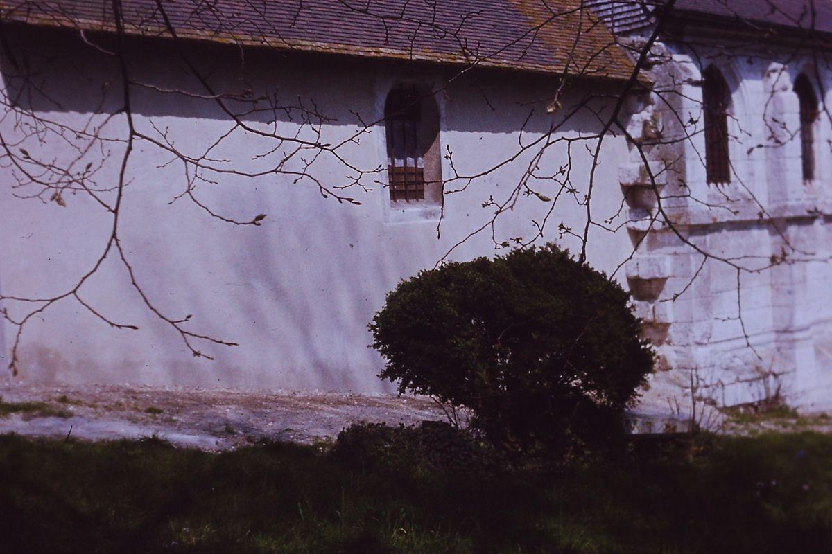 le buis en 1978