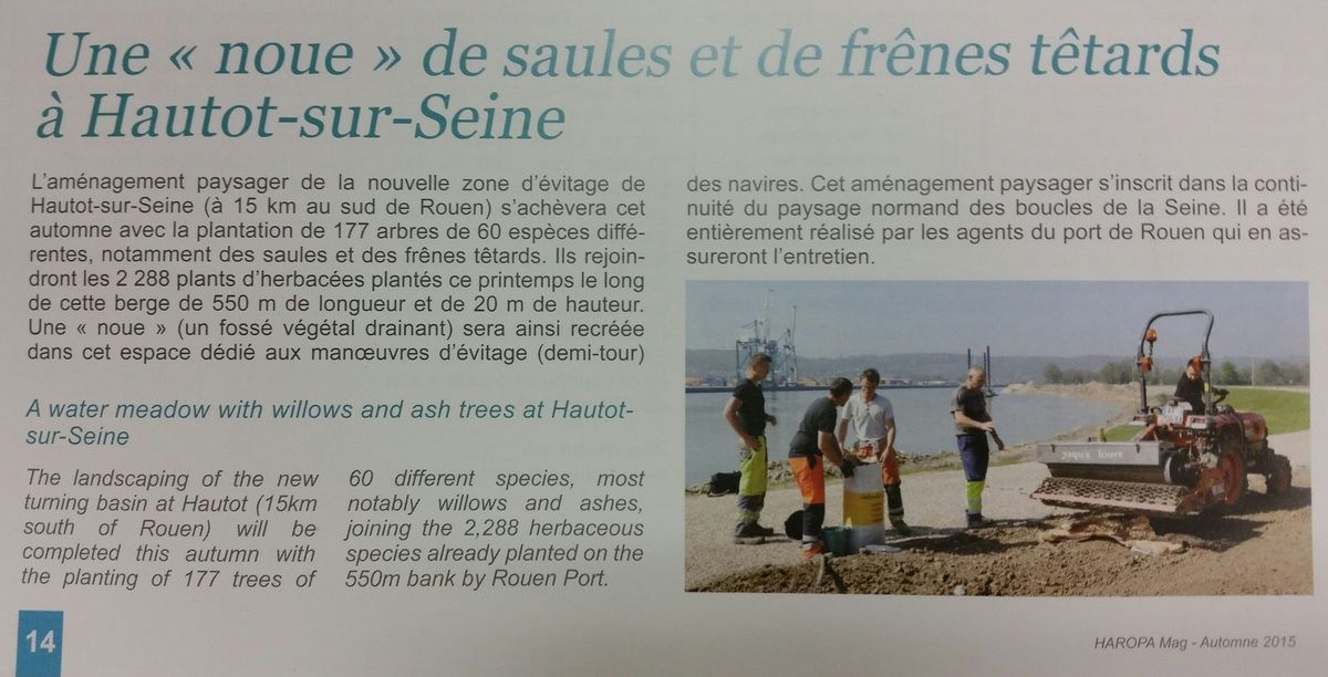 L'échec de l'aménagement de la noue d'Hautot sur Seine