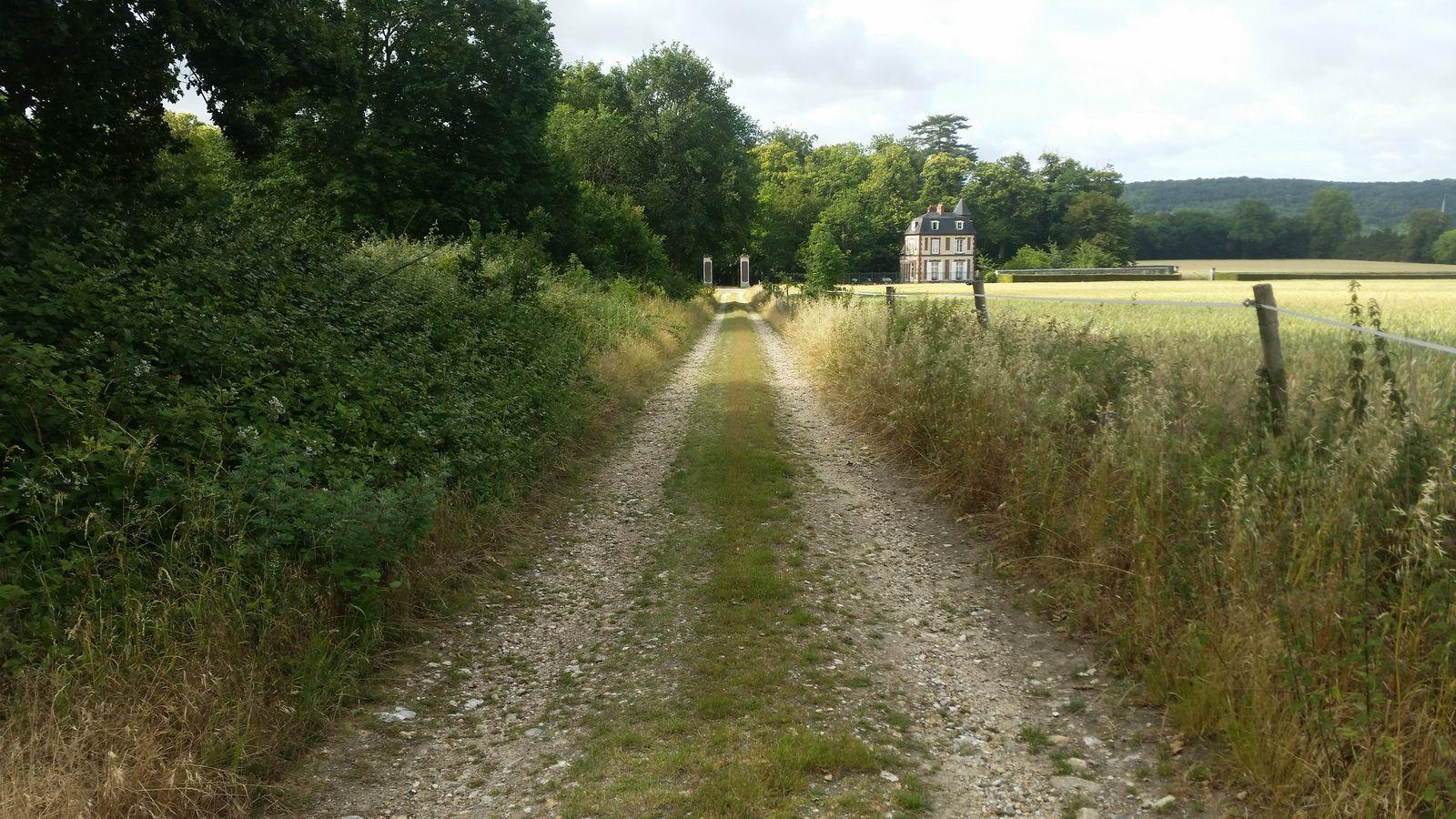 L'Avenue de Soquence entre Hautot-sur-Seine et Sahurs