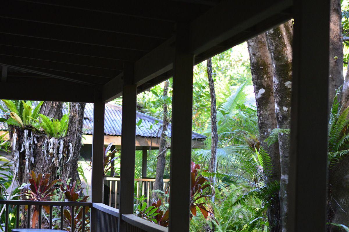Bungalo dans la Rain Forest de Daintree