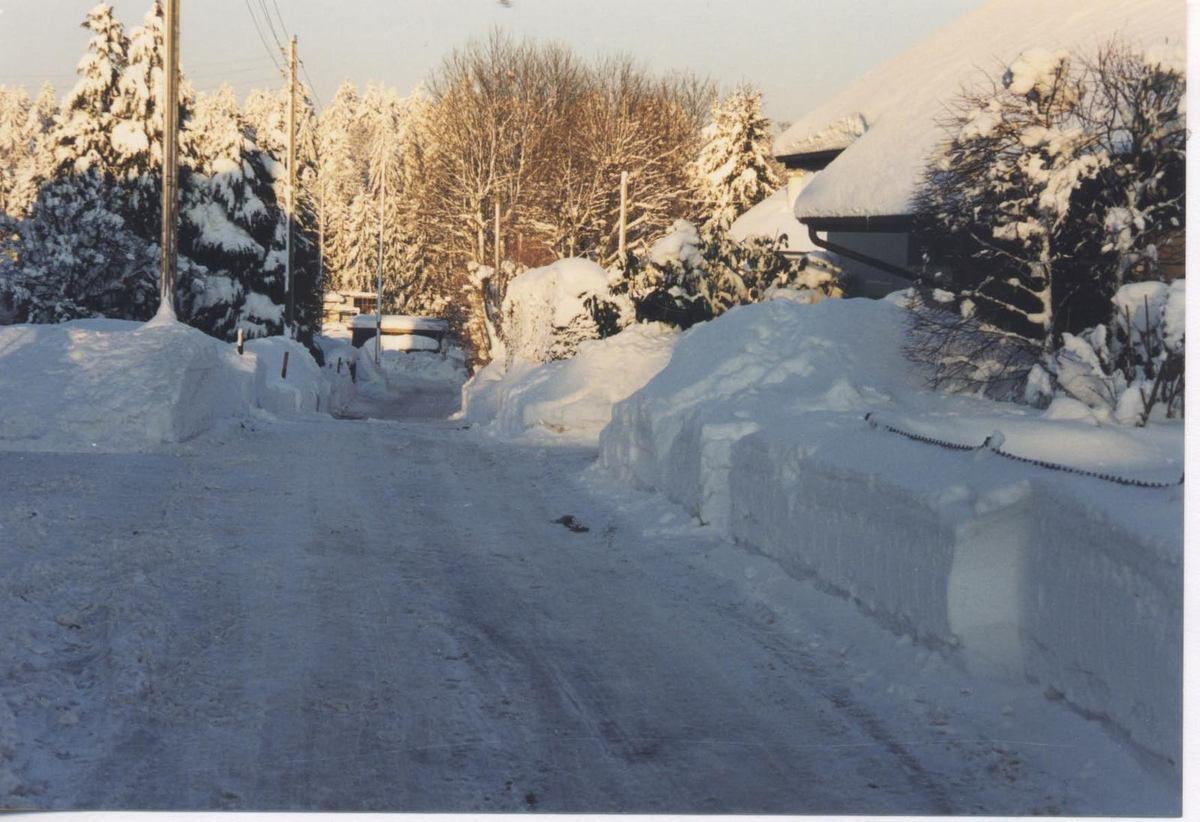 Vers-chez-les-blancs localité suisse près de Lausanne
