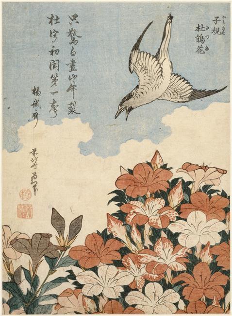 Coucou et azalée, Hokusai ( 1760-1848)
