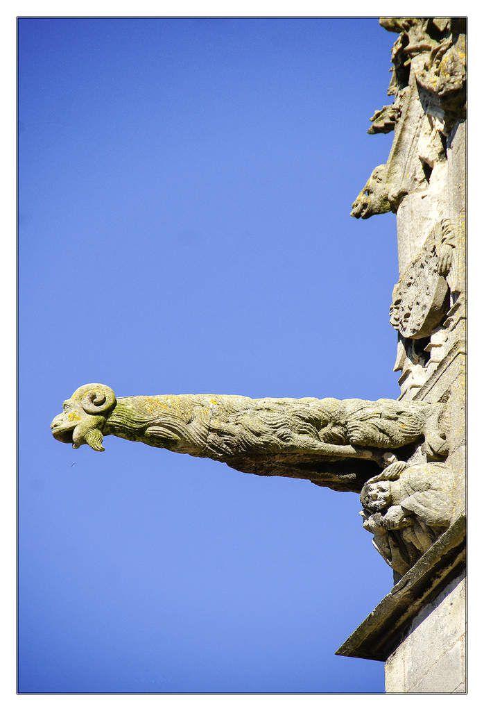 ~ Gargouilles de la cathédrale Saint-Julien du Mans, XIII et XIVème siècles.