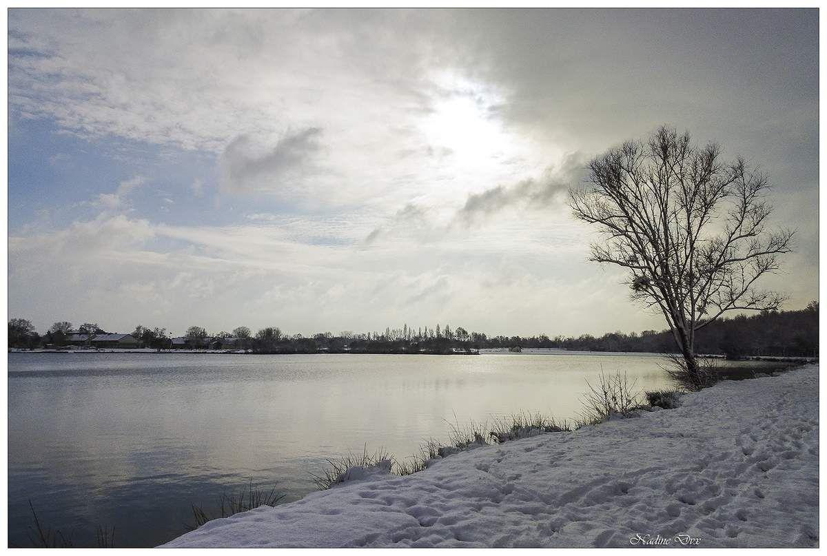 Lac de la Gèmerie en hiver - Sarthe