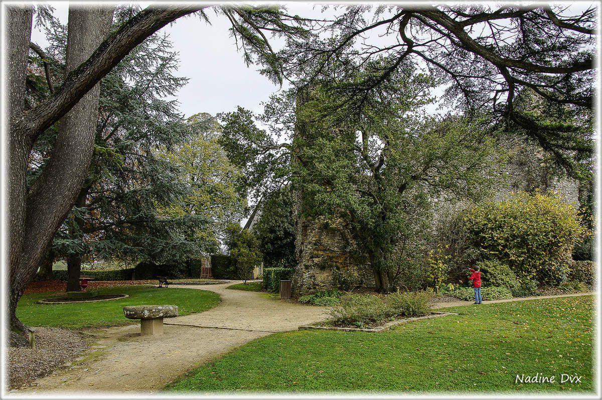 Parc du château de Fresnay-sur-Sarthe