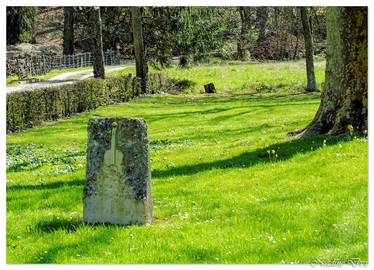 Jardin de l'Abbaye de l'Epau -  Le Mans