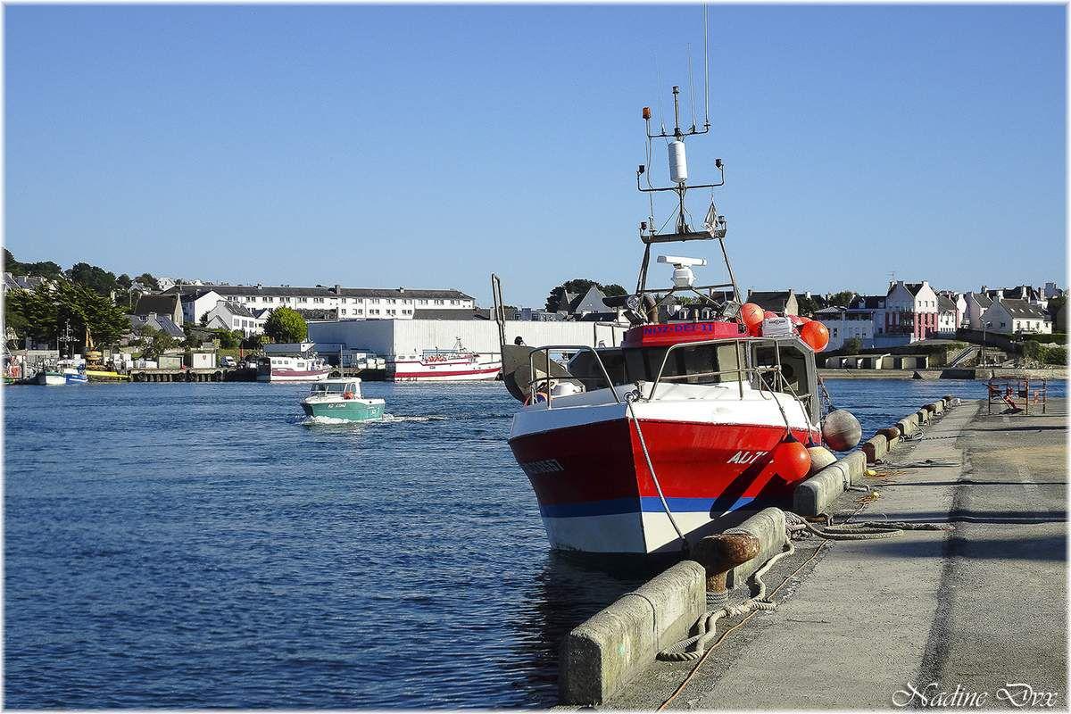 Port de pêche d'Audierne - 29