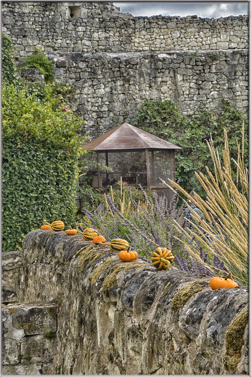 Le potager de Gargantua du château du Rivau