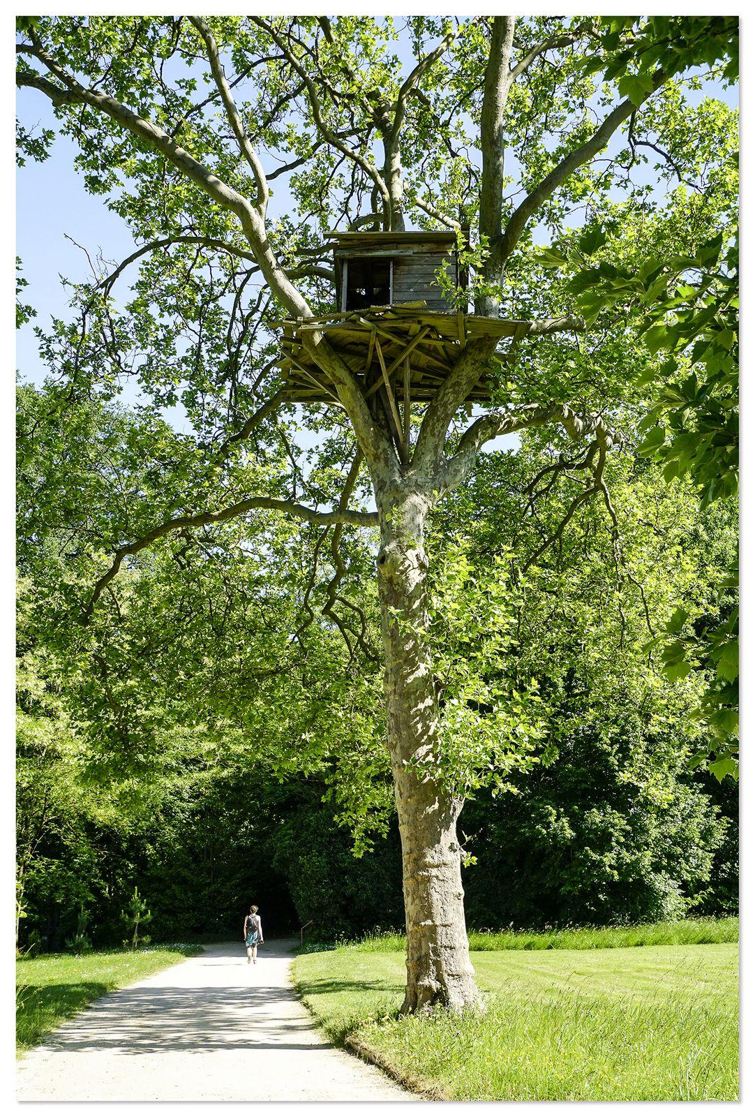 Le Parc du domaine de Chaumont-sur-Loire - Edition 2017 -  Le pouvoir des fleurs.