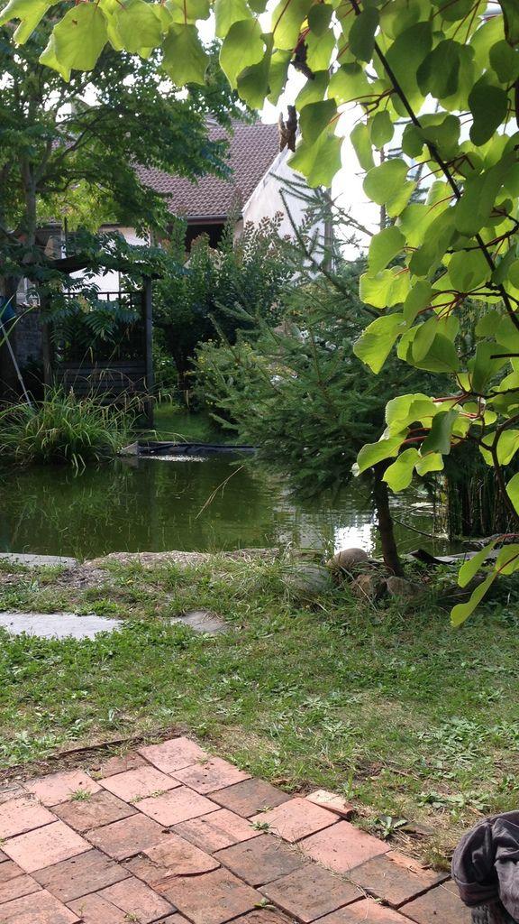 Le bruit de l'eau du bassin nous ferait croire à une petite cascade... quel plaisir !