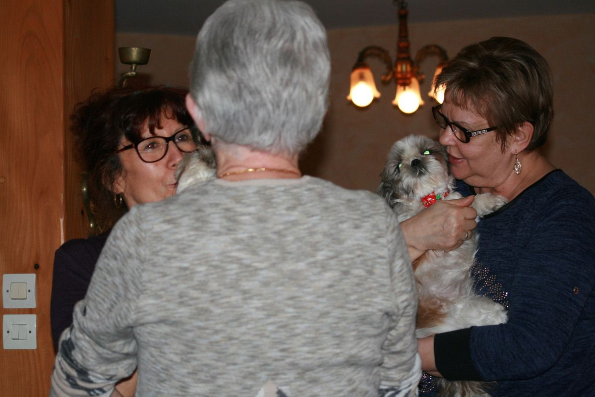 les marraines de iubi et hevy sont arrivées, on ne sait qui fait plus la fête, les petites chiennes ou les marraines...