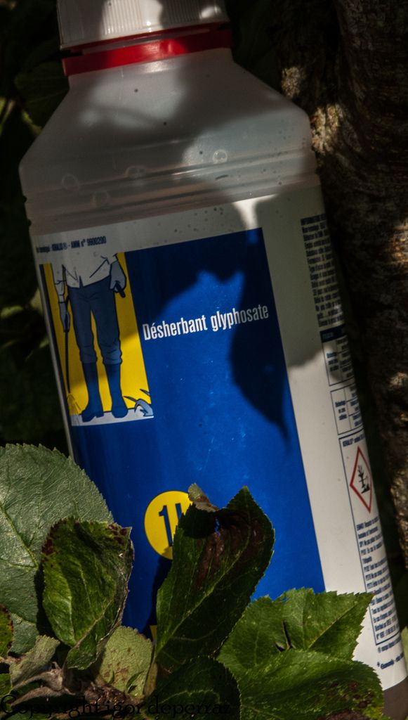 Monsanto papers réhabilitez Guillaume Malaurie