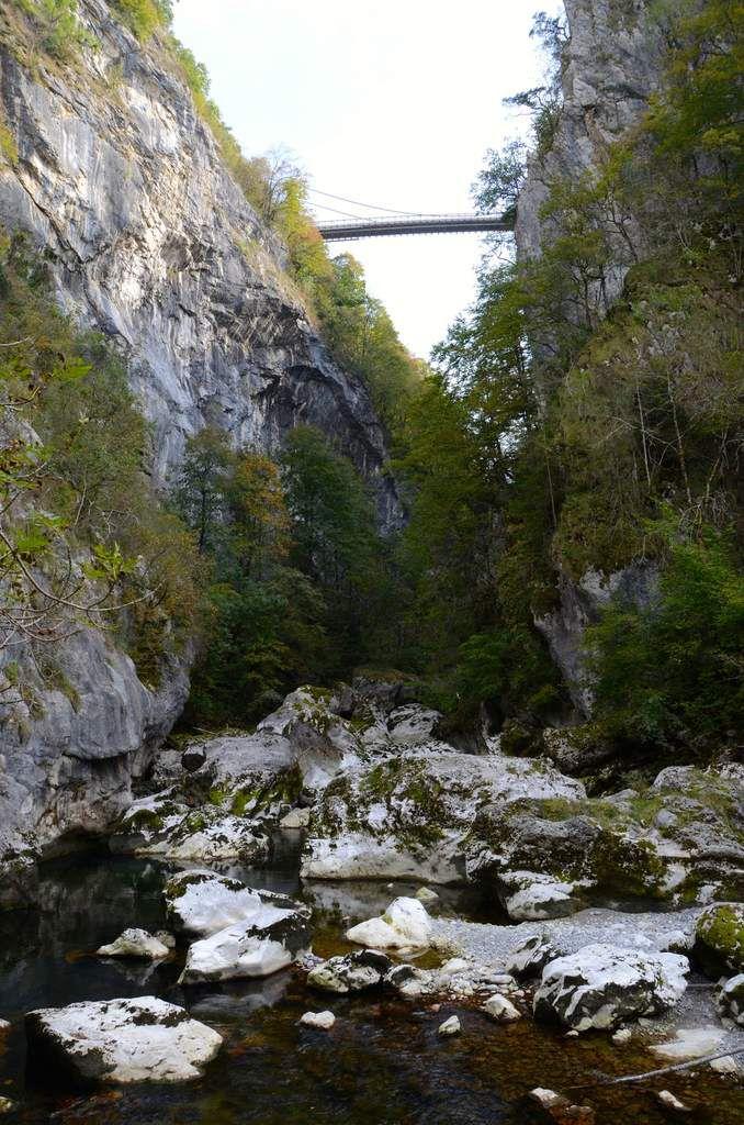 Le pont de l'abîme vue 95m plus bas .