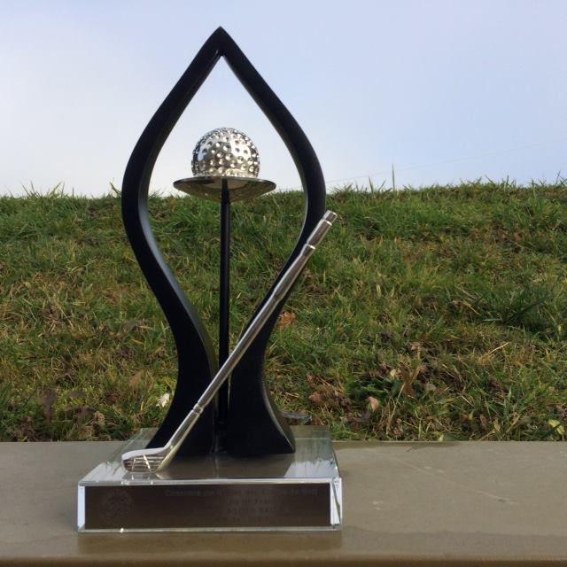 Saint-Aubin grand vainqueur du Trophée Augustin GANGOSO .... Organisation Ligue IDF .....