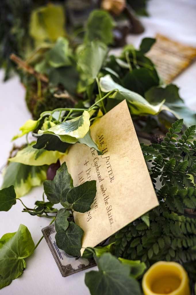 La forêt enchantée : mariage geek - Salle de l'Orangerie de Salinelles