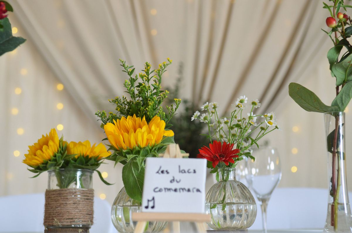 Mariage irlandais au Domaine Belric // Irish wedding // South of France