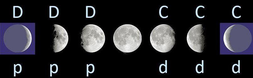 Moyens mnémotechniques de langue française pour identifier une phase lunaire.