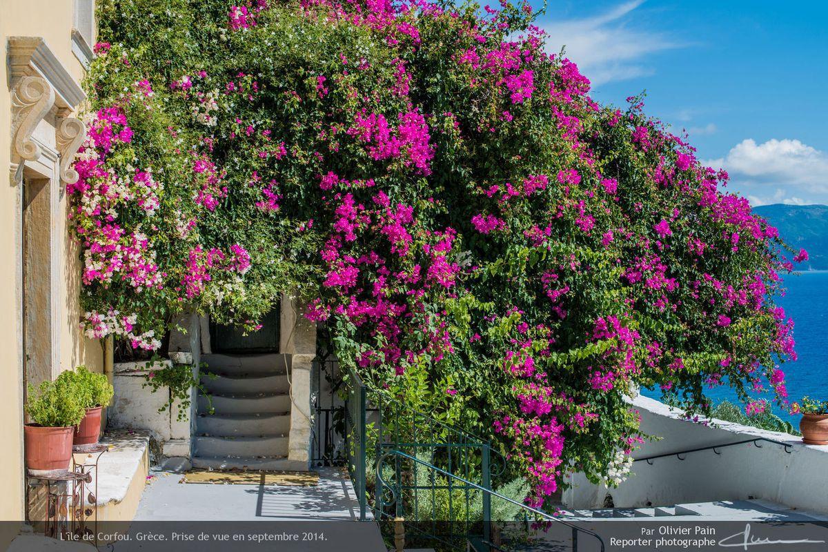 Visite de l'île de Corfou, grèce