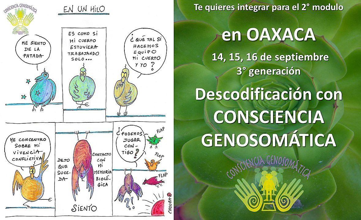 Con alegría en Oaxaca para seguir en nuestro modulo de Descodificación con Consciencia Genosomática.  Más info en conscienciagenosomatica@gmail.com