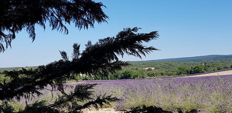 Balade en Drôme Provençale...