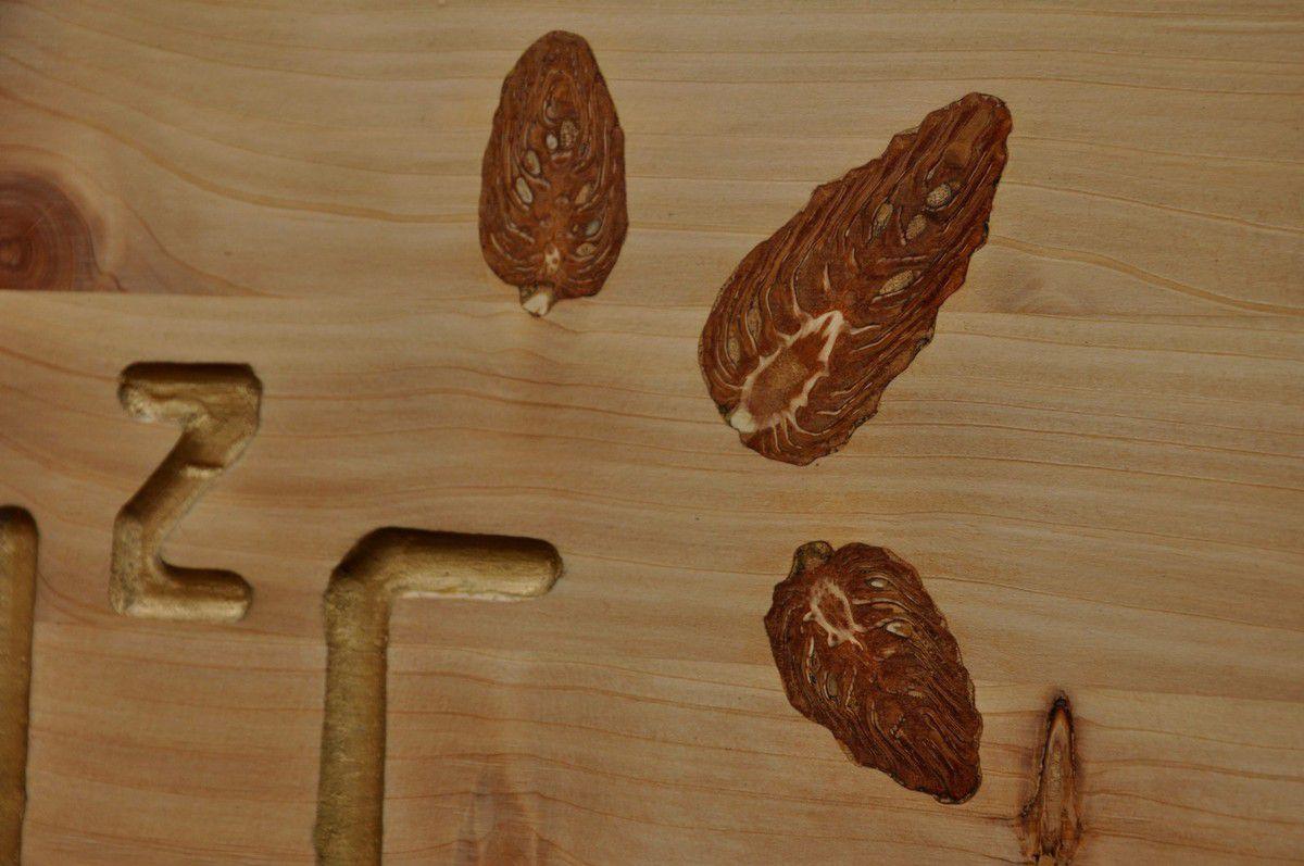 Pour voir les détails des pommes de pin.