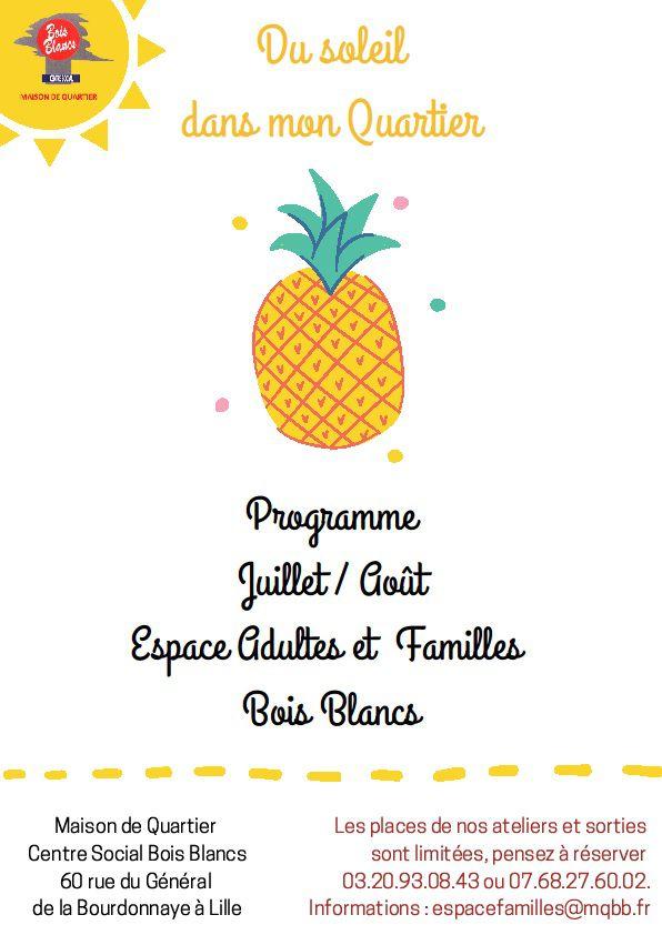programme estivale EAF Centre Social Lille Bois Blancs