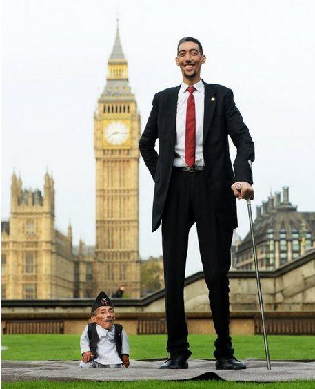 L'homme le plus grand du monde, le Turc Sultan Kösen, a rencontré jeudi à Londres pour la première fois le plus petit, Chandra Bahadur Dangi, un Népalais. L'un culmine à 2,51 mètres, l'autre ne fait que 54,6 cm. Cela fait 1,97m d'écart !  L'événement, organisé par le livre Guinness des records à l'occasion du dixième anniversaire de son « Jour des records », s'est déroulé en plein centre-ville sur la pelouse d'un jardin près du Parlement de Westminster, où les deux hommes ont pris le thé.