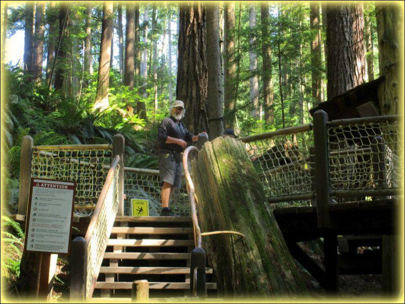 Parc et pont suspendu de Capilano a Vancouver