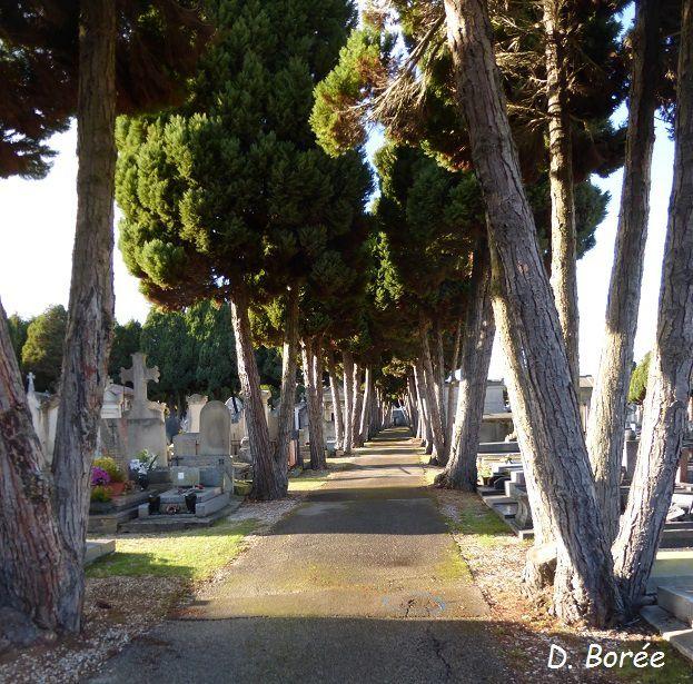 Le cimetière Saint Amâtre..