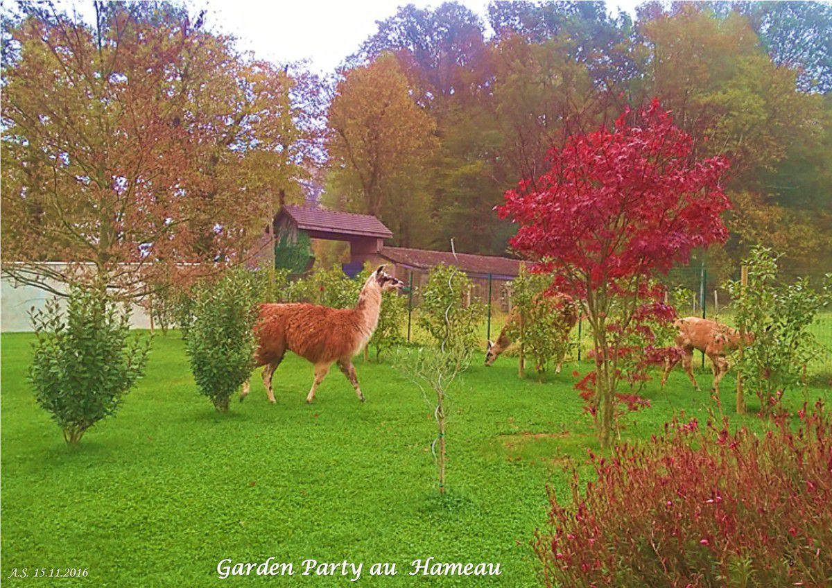 Garden Party au Hameau...