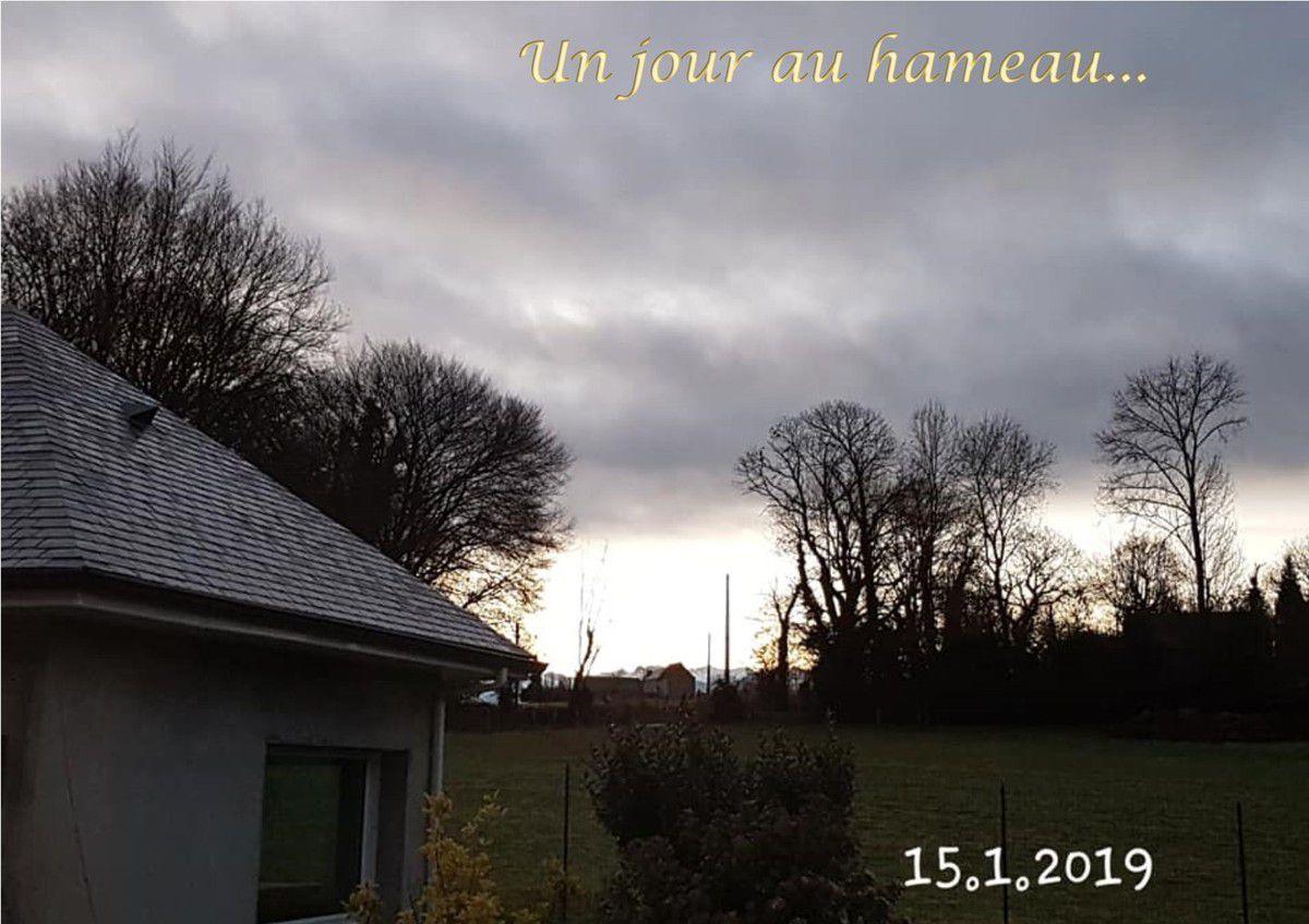 15 janvier 2019