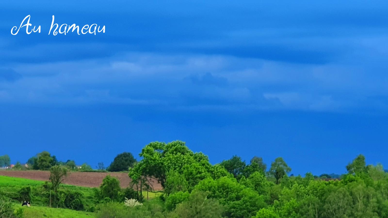24 avril 2020 - avant la pluie...