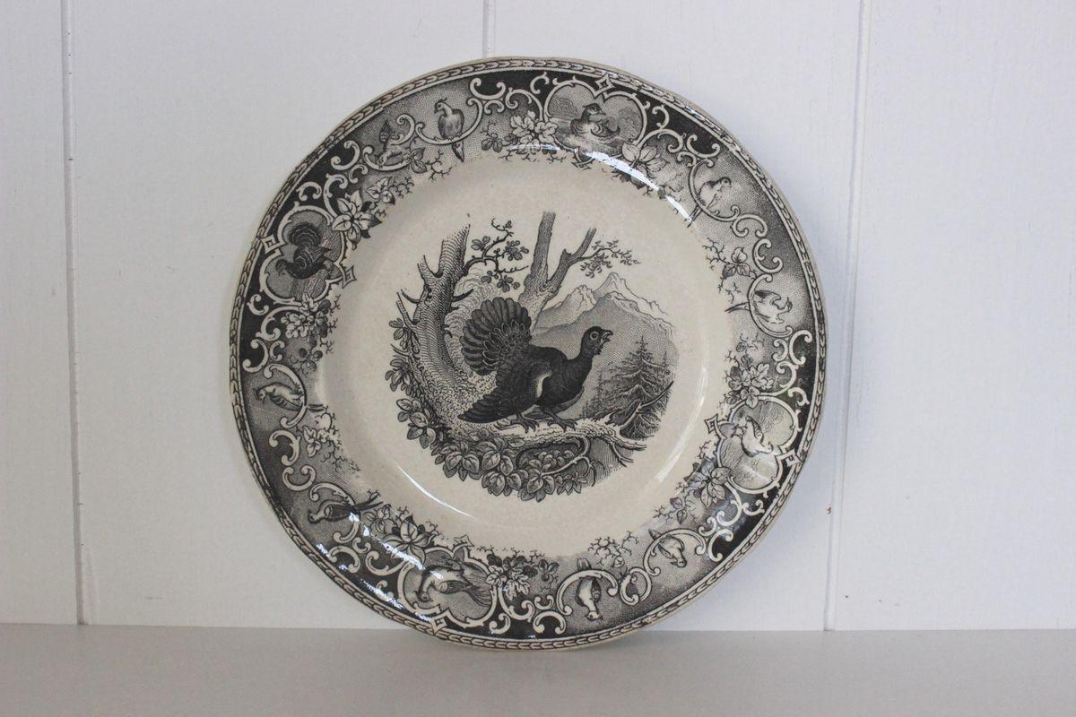 Assiette Ancienne Opaque de Sarreguemines Décor Oiseaux