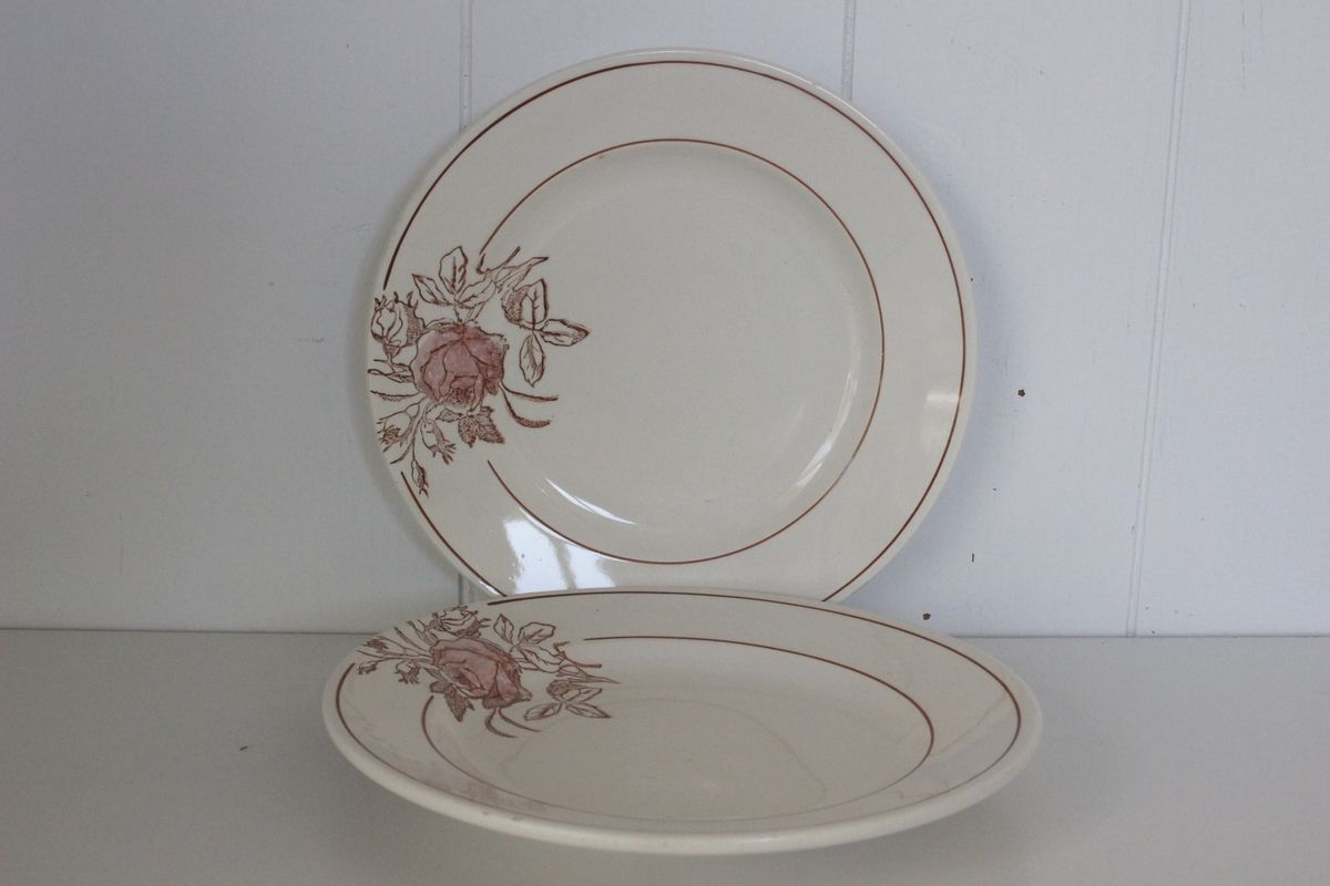 Lot de 2 assiettes plates décor rose marron Vintage