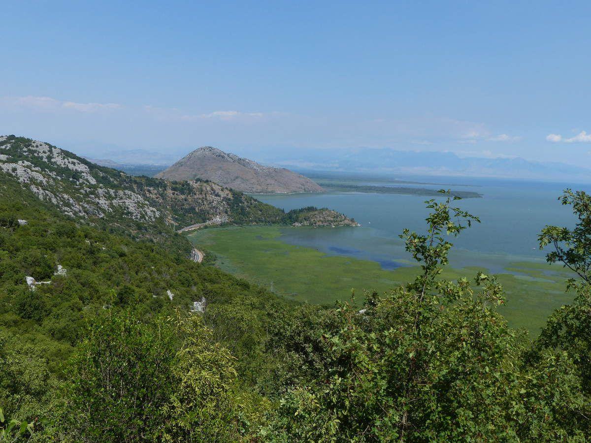 Vues sur le lac Skadarsko  (Shkoder)