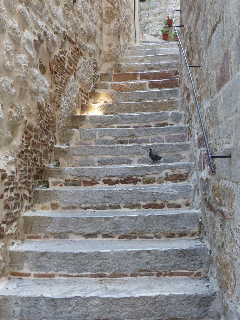 La vieille ville de Kotor