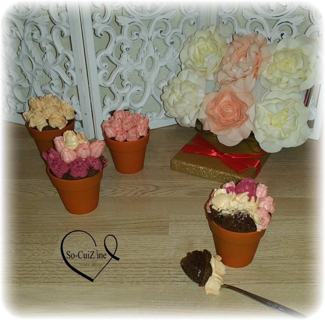 Fudge Chocolat - Pot de fleurs - Fête des mères - SMBC