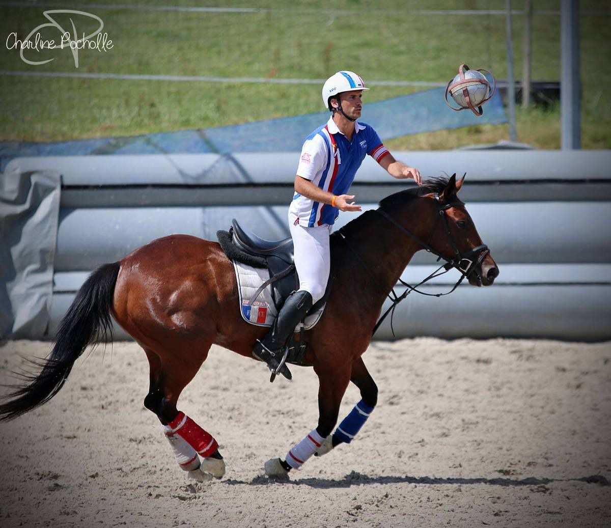 Mikel le Gall, horse ball,