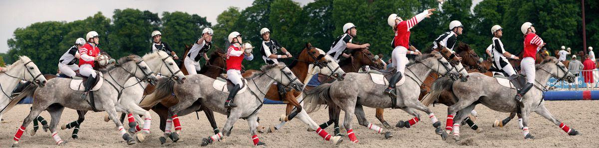 Marie BENOIT, cavalière de Bordeaux Blanquefort Horse Ball