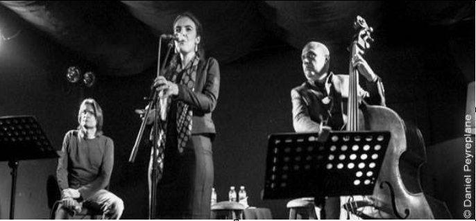 """LITTÉRATURE ET JAZZ :  MARCUS MALTE """"Les Harmoniques"""" le 15 octobre à SAINT JEAN DE BRAYE"""