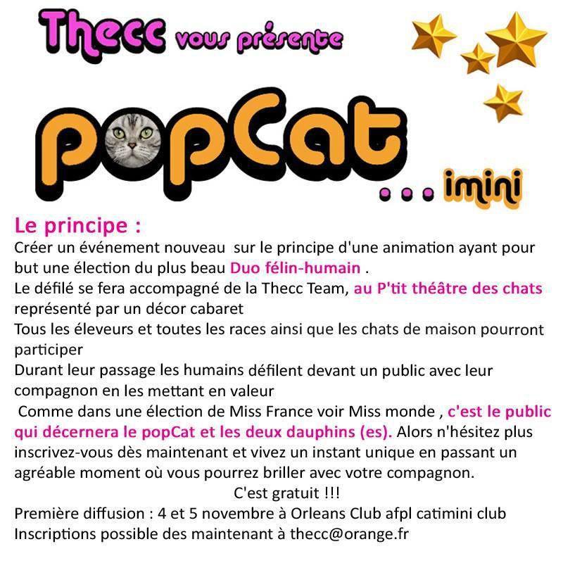 POPCAT SHOW, nouvelle animation sur le SALON INTERNATIONAL DU CHAT d'ORLEANS les 4 et 5 novembre 2017